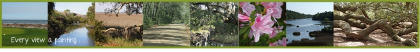 Angel Oak banner
