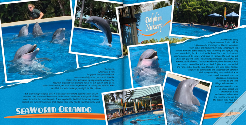 pixels2Pages_Blog_DolphinNursery_PMP