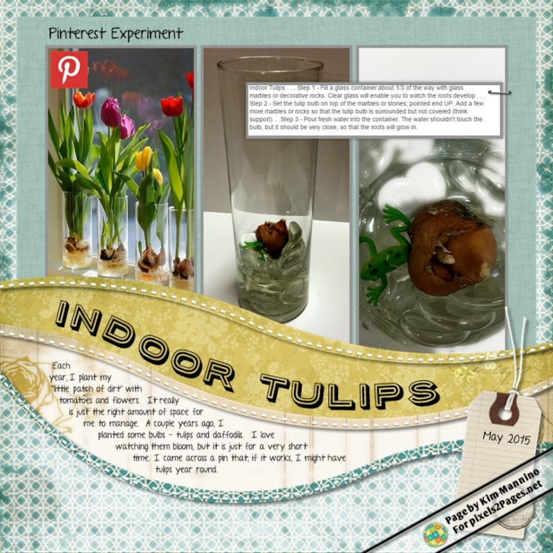 Blog_Pinterest_IndoorTulips_SamplePage